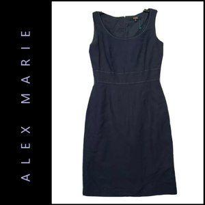 Alex Marie Women Sleeveless Sheath Dress Size 4